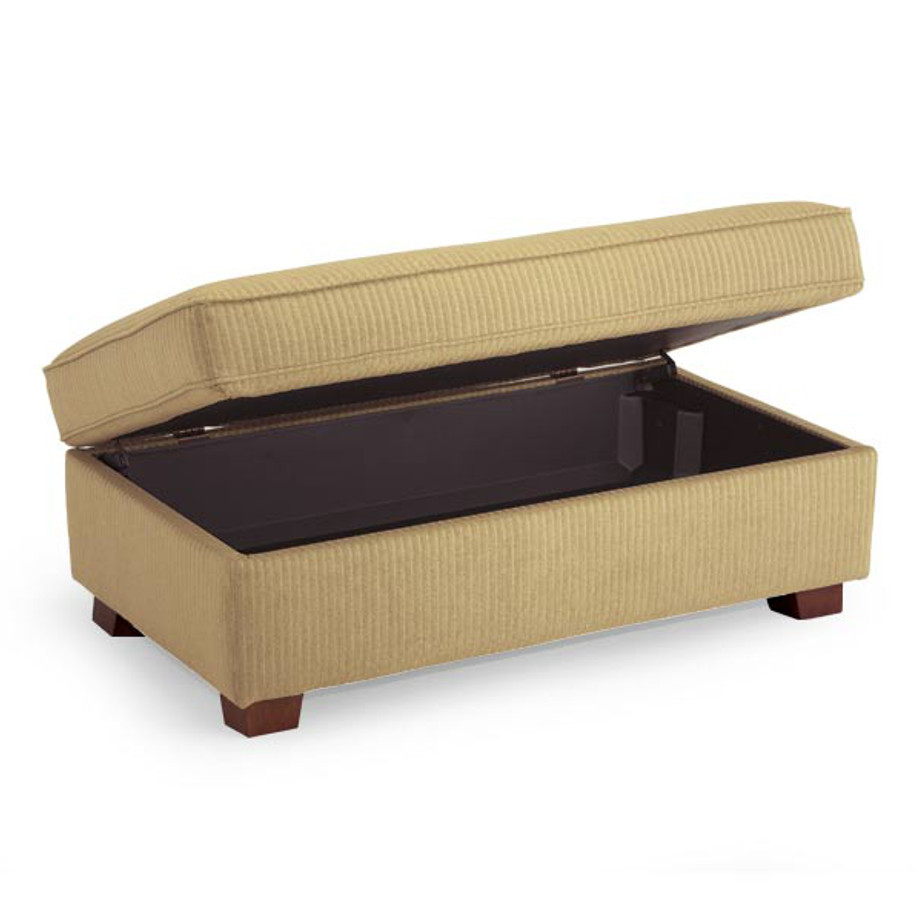 Storage Bench Or Occasional Chair For Living Room