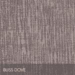 Bliss Dove